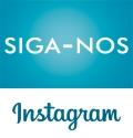 link instagram